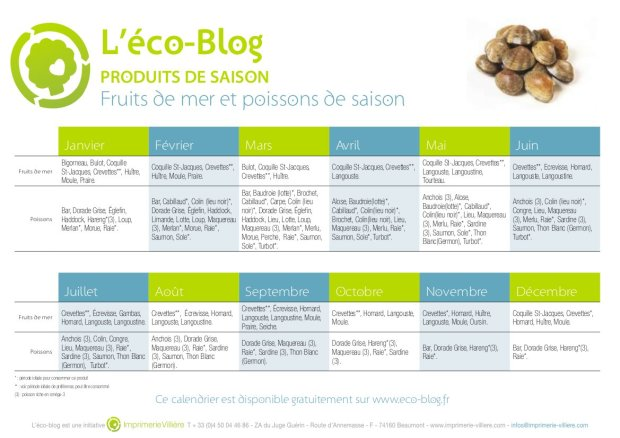 eco-blog