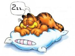 dormir-garfield