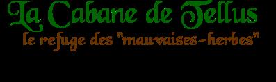 Titre_Bannière1