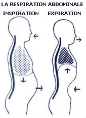 respiration abdominale V.2